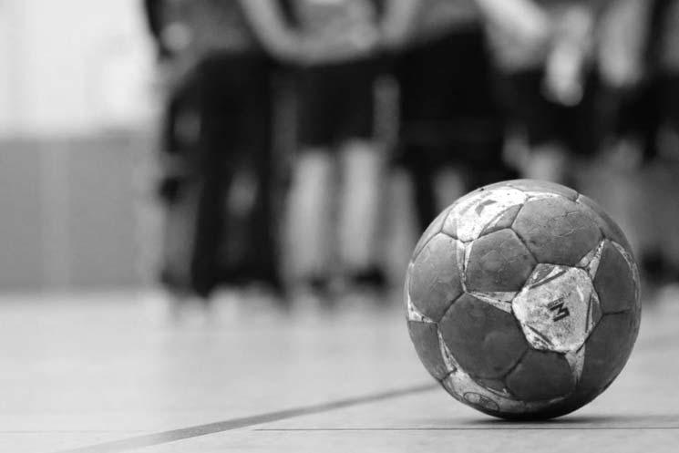Sektion-Handball