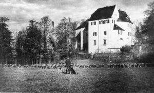 1946-Badbau-Wiese vor dem Sportplatz
